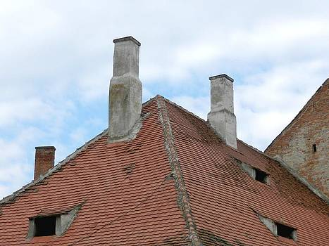 Ion vincent DAnu - Old Style Chimneys and Eye-Like Attic Windows