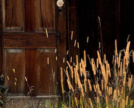 Old Timber Door by Frank Gaffney