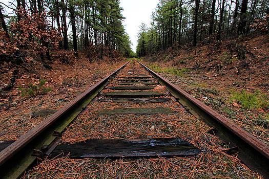 Old Tracks by George Ferreira