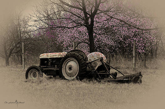 Old Tractor and Redbuds SEPIA by Jill Westbrook