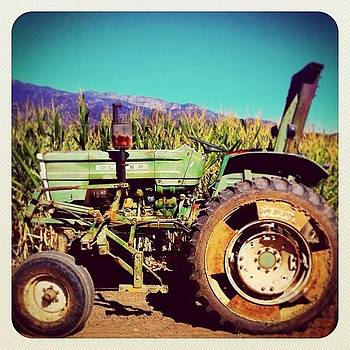 Old Tractor At Boccali's. #fall by Tristan Thames