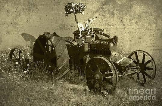 Old tractor by Vladimiras Nikonovas