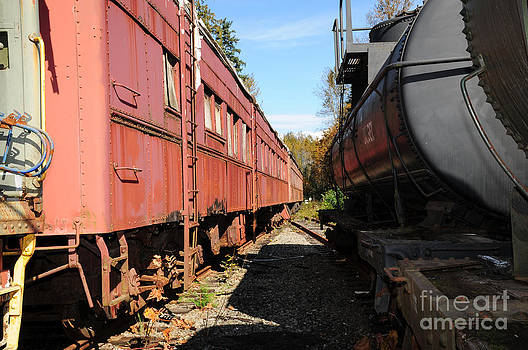 Old Train Wagons at Ease by Malu Couttolenc