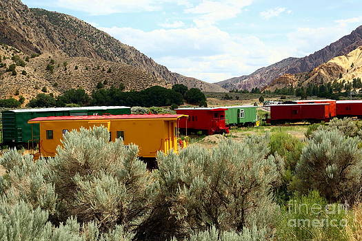 Sophie Vigneault - Old Train Wagons