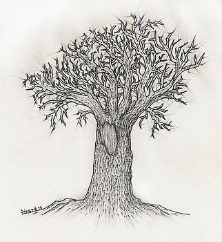 Jason Girard - Old Tree