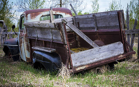 Old Truck with Moss by Gerald Murray Photography