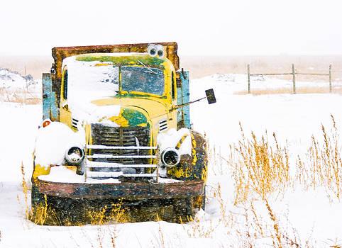 Old Trunk in the Winter Snow by Jesska Hoff