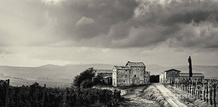 Old Vinyard Farmhouse in Val D'Orcia Tuscany Italy by Robert Leon