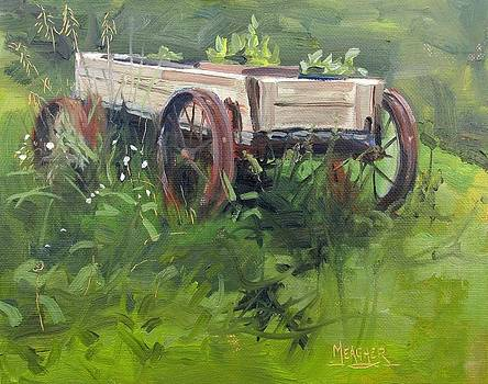 Old Wagon In Weeds by Spencer Meagher