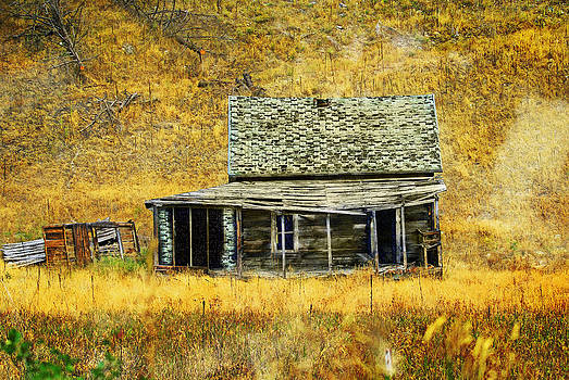 Marty Koch - Old Washington Homestead