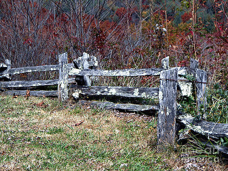 Old Weathered Mountain Fence by Eva Thomas
