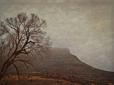 Old West Landscape Fog on the Mesa by Julie Magers Soulen
