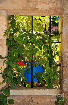 George Atsametakis - Old window