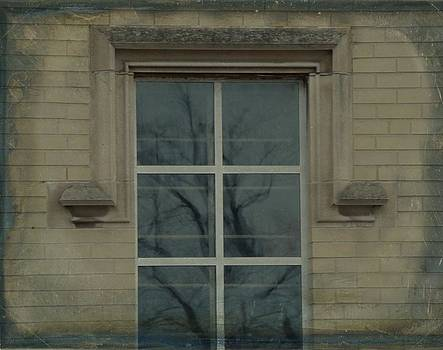 Gothicrow Images - Old Window