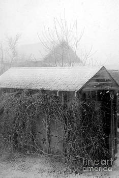 Old Winter Shed by J Bern Hunt