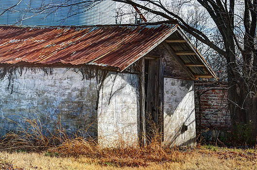 Old Wood Shed by Lisa Moore