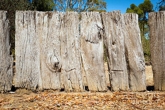 Tim Hester - Old Wooden Fence