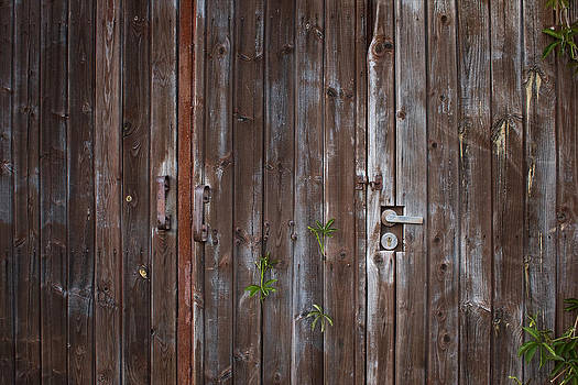 Old wooden gates by Anna Grigorjeva