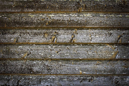 Old wooden wall by Anna Grigorjeva