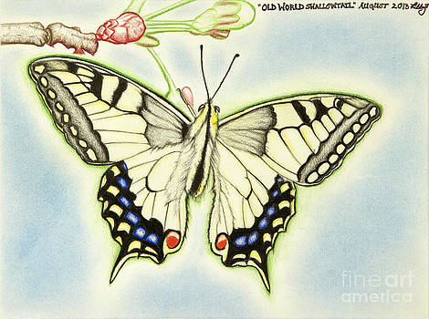 Old World Swallowtail by Taryn  Libby