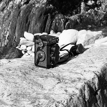 Old Yashica 124 by Steve Lang