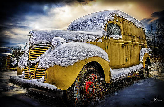 Old Yeller by Steve  Milner
