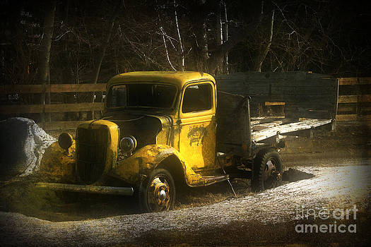 Alyce Taylor - Old Yellow