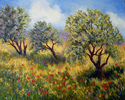 Olive Orchard by Alexandra Kopp
