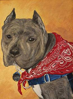 OLIVE our rescue girl in RED by Marcia Crispino