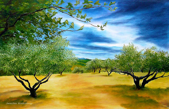 Olive trees by Jennifer  Blenkinsopp