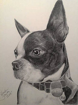 Ollie by Heidi Smith