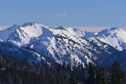 Ronda Broatch - Olympic Mountain View I