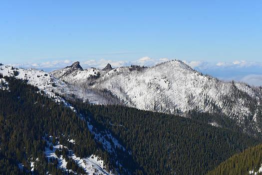 Ronda Broatch - Olympic Mountain View II