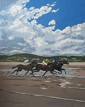 Omey Horse Races Cladaghduff Connemara Ireland by Diana Shephard
