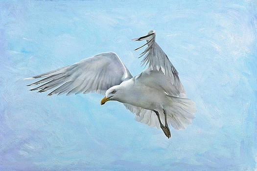On A Wing And A Prayer by Liz Mackney