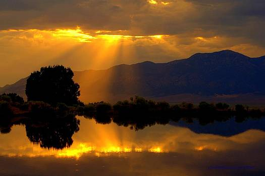 On Golden Pond by Jeanne  Bencich-Nations