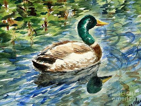 On Sayen Pond by Lynn Cheng-Varga