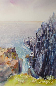 On the edge of the cliff by Beatrice Cloake