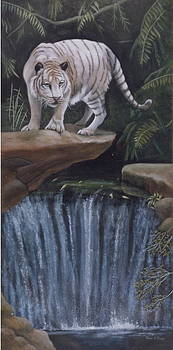 ON THE EDGE-White Tiger by Patricia Mansell