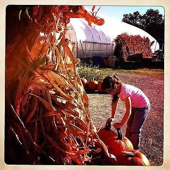 On The Farm Today by Deirdre Ryan