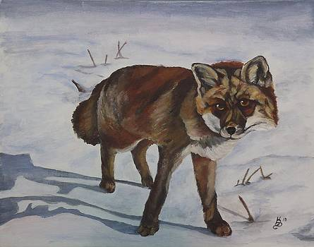 On the Prowl by Kim Selig