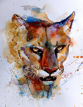 On the prowl by Steven Ponsford