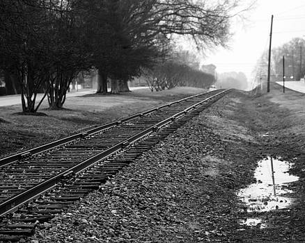 On The Right Track by Michael Tipton