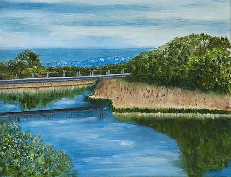On The Rio Grande by Gina Cordova