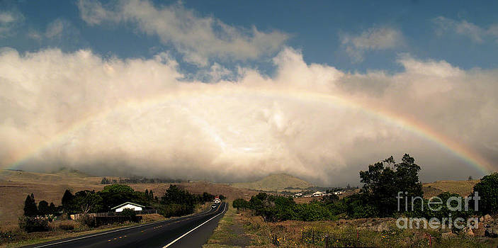 On the Road to Hilo by Patricia Griffin Brett