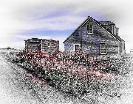 On the Road to Peggys Cove by Ron Pearl