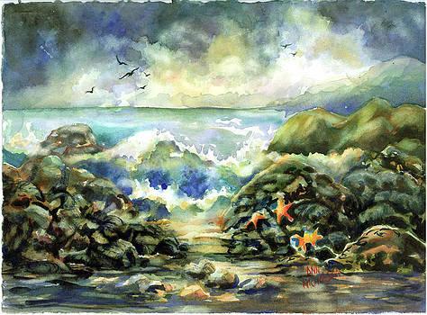 On the Rocks by Ann  Nicholson