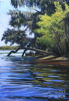 On the St. Johns River by Deb LaFogg-Docherty