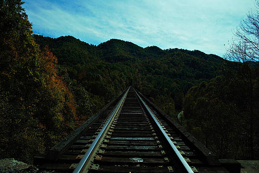 On the Tracks by Annette Childress