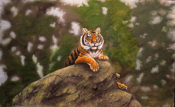 On Top Of Tiger Rock by Greg Neubert